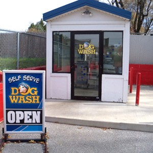 Welcome To All Shined Up All Shined Up Car Wash Car Cleaning